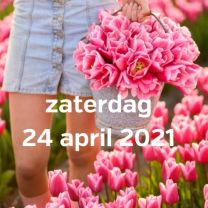 Bezoek tulpenvelden 24 april 2021