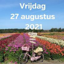 Bezoek dahliavelden 27 augustus 2021