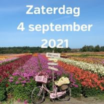 Bezoek dahliavelden 4 september 2021
