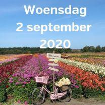 Bezoek dahlia velden 2 september 2020