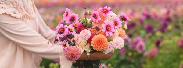 plukbloemen uit eigen tuin