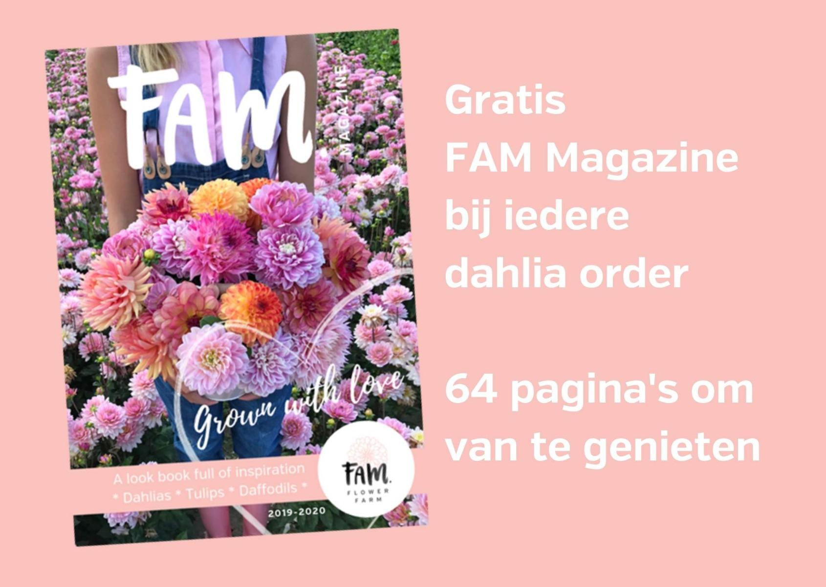 Gratis magazine dahlia order