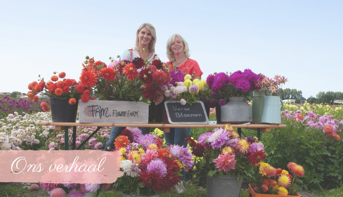 Over ons - FAM Flower Farm