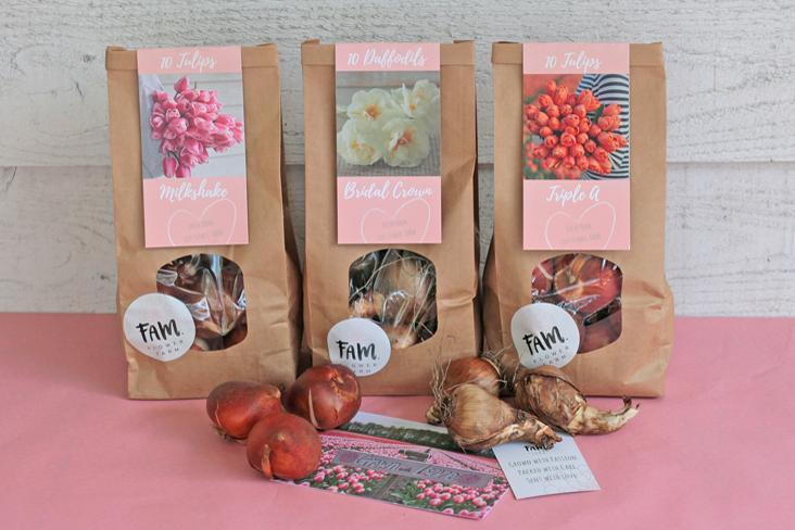 Verpakking bloembollen tulpen FAM