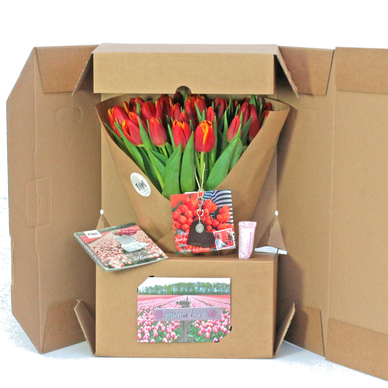tulpen bloemen concept